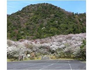a-sakuranosato4_R-320x280_JALAN_160309.jpg